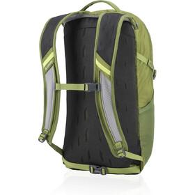 Gregory Nano 20 Backpack mantis green